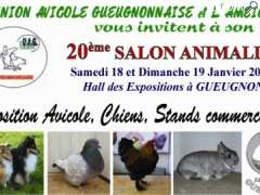 photo de Salon animalier